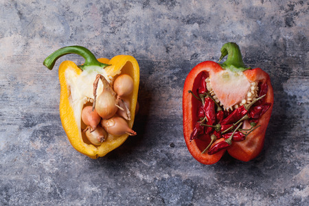 Half of raw red and yellow paprika stuffed by little onions and red hot chili peppers over vintage background.  photo