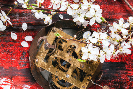 Old clock mechanism with blossom branch of cherry-tree on black and red wooden table. photo