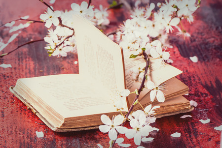 Open vintage book with blossom branch of cherry-tree on black and red wooden table.