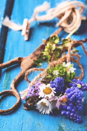 Bouquet of wildflowers and old rusty scissors over blue wooden background photo