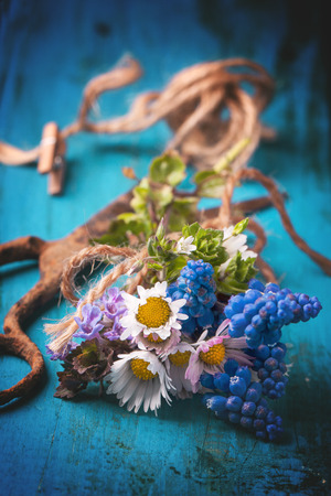Bouquet of wildflowers and old rusty scissors over blue wooden background. See series photo