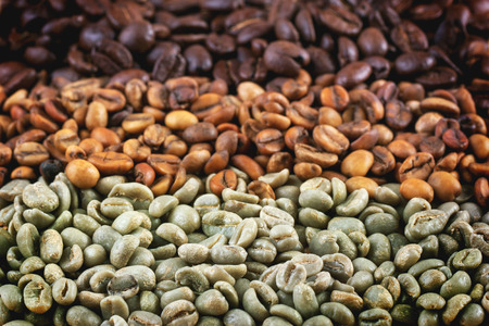 unroasted: Green and brown decaf unroasted and black roasted coffee beans as background. Stock Photo