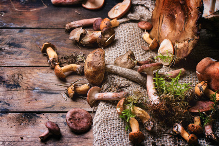Mix of forest mushrooms over old wooden table. See series photo