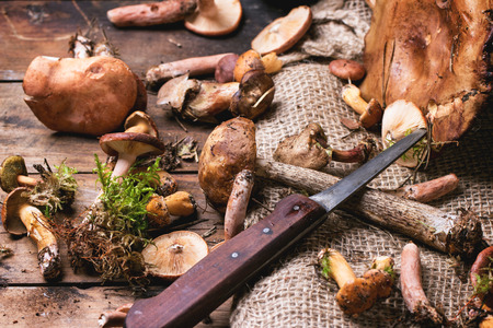 Mix of forest mushrooms with vintage knife over old wooden table photo