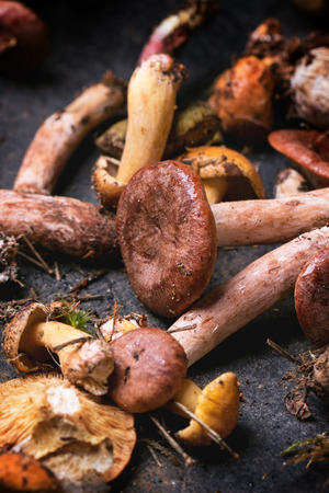 Mix of forest mushrooms on black cutting board photo