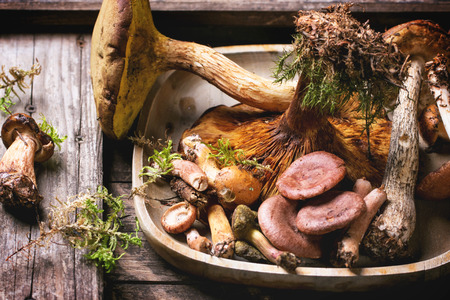 Wooden plate with mix of forest mushrooms over old wooden table photo