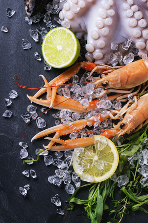 langoustine: Raw langoustine, mussels and octopus with lime and herbs, served on ice over black background. Top view Stock Photo