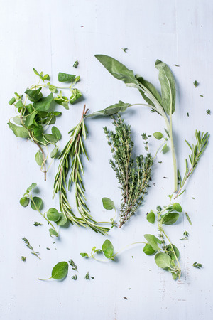 Assortment of fresh herbs thyme, rosemary, sage and oregano over light blue wooden background. Top view Stockfoto
