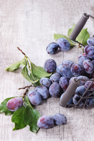 basket: Ripe purple plums with leaves in inverted metal decorative basket over gray wooden background. Stock Photo