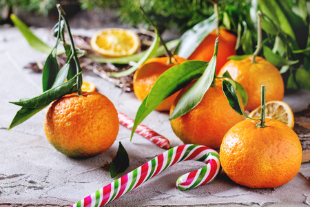 frutas secas: Tangerines with leaves in Christmas decor with Christmas tree, dry orange and candies over gray plaster surface. Side view. Foto de archivo