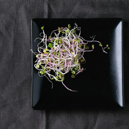sprout: Healthy diet. Fresh  Radish Sprouts on black square plate over dark gray textile. Space for text. Top view.
