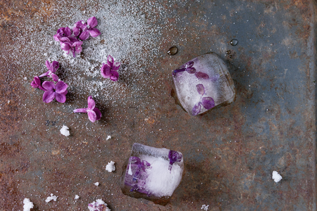sugared: Ice cubes with lilac flowers, white sugar and sugared lilac flowers over old rusty iron background. Top view