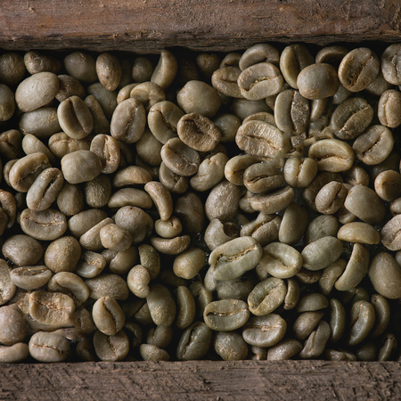 unroasted: Food background with Green unroasted coffee beans in old wooden box. Top view. Close up. Square image