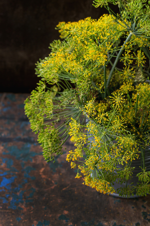 Bouquet of flowers of green dill in iron bucket over old dark wooden textured background. Rustic style. With selective focus Stock Photo