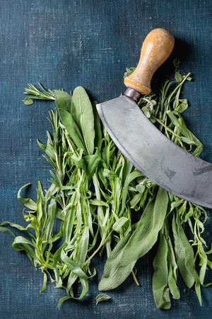leaf cutter: Bundle of fresh Italian herbs rosemary, oregano and sage with vintage herb cutter over dark blue shabby background. Top view with copy space Stock Photo