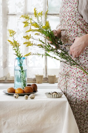 colored bottle: Preparing for Easter. Female hands cutting by old scissors yellow flowers near white tablecloth table decorated brown chicken and quail colored easter eggswith window as background. Day light.