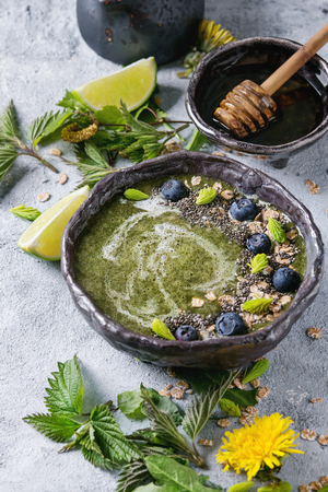Spring green nettle and dandelion smoothie bowl served with lime, yellow flowers, young leaves, oat flakes, chia seeds, blueberries, cream and honey over gray blue texture background.