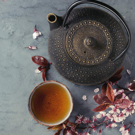 Black iron teapot and traditional ceramic cup of tea with blossom pink flowers cherry branch over gray blue metal texture background. Top view with space, Asian style. Square image Stock Photo