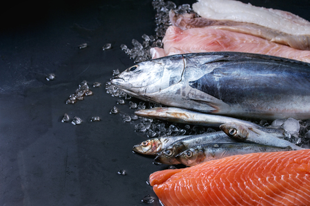 Variety of raw fresh fish. Whole tuna and herring, fillet of salmon, cod, red fish on crushed ice over dark wet metal background. Close up with space. Фото со стока