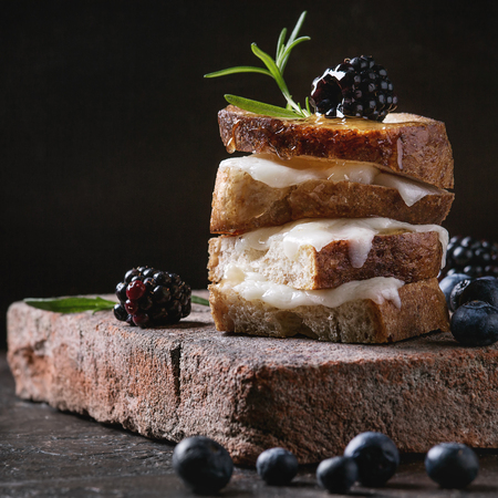 Grilled sandwich with melted goat cheese, blackberry, blueberry, rosemary and honey, served on terracotta board over dark background. Summer appetizer. Square image
