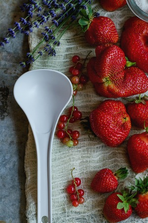 Fresh ripe strawberries prepared for making jam. Served with sugar, lavender, red currant, white plastic spoon on gauze over gray metal background. Preserving concept. Top view. Rustic, day light Stock Photo