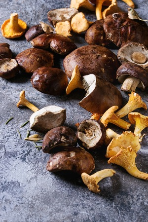 Heap of fresh forest porcini boletus and chanterelles mushrooms over gray texture background. Top view with space.