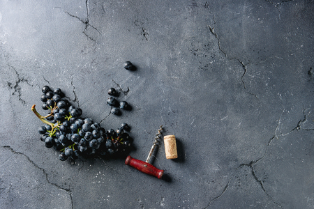 Bunch of fresh ripe dark blue Isabella grapes with old corkscrew and cork over black texture background. Top view with space. Food background