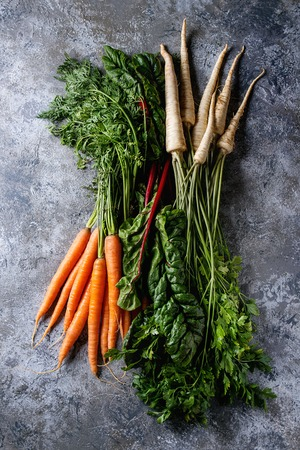Bundle of fresh organic carrot, parsnip with haulm and chard mangold over gray texture background. Top view with space Stock Photo