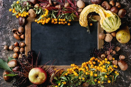 Kader van de herfstbessen, pompoen, bladeren en noten met leeg uitstekend bord over bruine concrete achtergrond. Bovenaanzicht met ruimte voor tekst. Herfst oogst concept.