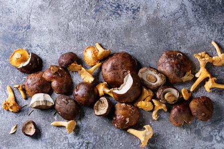 신선한 포리스트 넉넉하다 boletus와 회색 질감 배경 위에 chanterelles 버섯의 힙. 공간이있는 상위 뷰. 스톡 콘텐츠