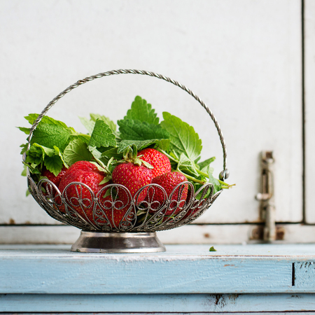 Fresh ripe garden strawberries and melissa herbs in vintage vase standing on blue white wooden kitchen table. Rustic style, day light, copy space. Square image