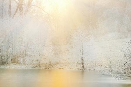 Frozen trees nea lake in fog winter day. Winter landscape Stockfoto