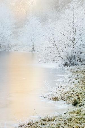 Bevroren bomen nea meer in mist winterdag. Winterlandschap Stockfoto - 87173088