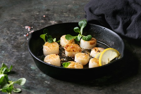 Fried scallops with butter lemon spicy sauce in cast-iron pan served with green salad and textile napkin over old dark metal background.