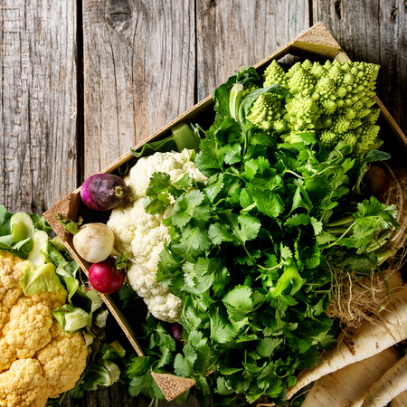 Variety of fresh raw organic colorful cauliflower, cabbage romanesco and radish with bundle of coriander in wood box over old wooden background. Top view with copy space. Square image