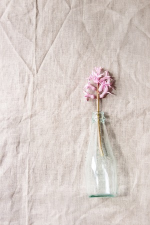 Spring blooming pink hyacinth in blue glass bottle over table with linen tablecloth. Womens day holiday greeting card Stock Photo - 99892569