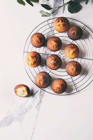 Fresh baked homemade lemon cakes muffins standing on cooling rack with eucalyptus branch over white marble texture background. Flat lay, space Stock Photo