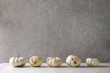 White whole defective uncooked decorative pumpkins in row on white marble table with grey wall at background. Autumn minimalist decoration.