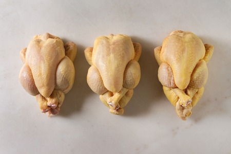 Three Raw organic uncooked whole yellow corn mini chicken in row over marble background. Cooking concept. Flat lay, space