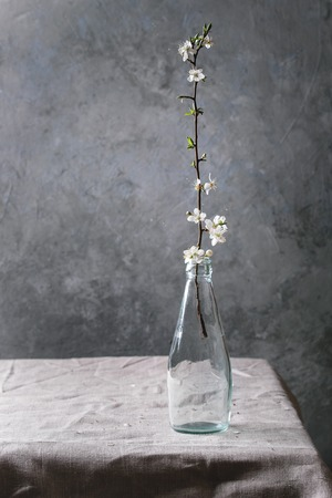 Spring white pear blooming branch in blue glass bottle standing on table with linen tablecloth. Stock Photo - 113382237