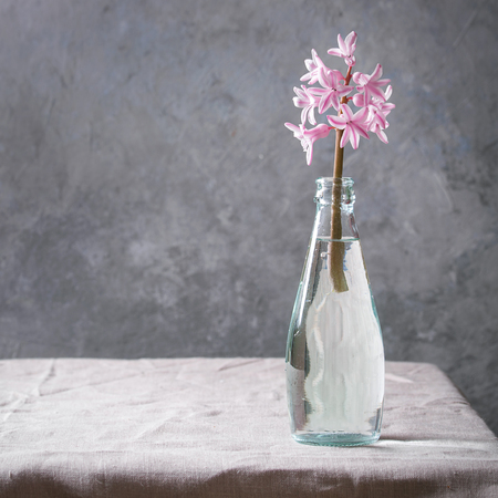 Spring blooming pink hyacinth in blue glass bottle standing on table with linen tablecloth. Square image