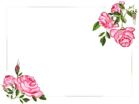 Watercolor roses background Zdjęcie Seryjne