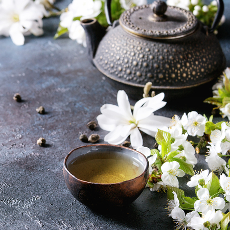 Traditional ceramic cup of hot green tea with black iron teapot, spring flowers white magnolia and cherry blooming branches over dark blue texture background, space. Square image