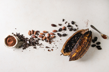 Variety of fresh and dry cocoa beans from cocoa pod with chopped dark chocolate and cocoa powder over white texture background. Flat lay, space 스톡 콘텐츠