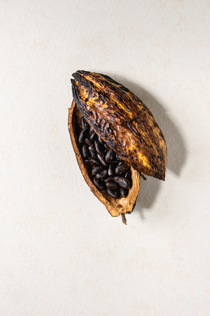 Fresh and dry cocoa beans from cocoa pod over white texture background. Flat lay, space 스톡 콘텐츠