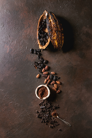 Variety of fresh and dry cocoa beans from cocoa pod with chopped dark chocolate and cocoa powder over brown texture background. Flat lay, space