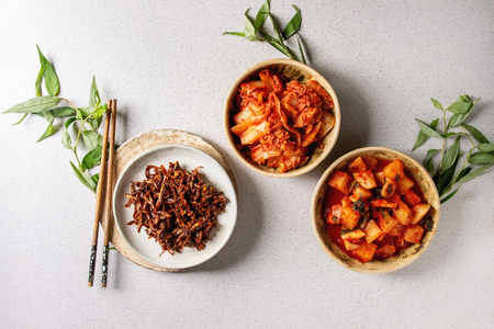 Korean traditional fermented appetizer kimchi cabbage and radish salad, hot spicy anchovies fish snack in ceramic plates with Vietnamese oregano greens over grey spotted background. Flat lay, space.