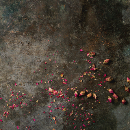 Old dark metal background with dry pink rose buds and petals. Copy space. Square image