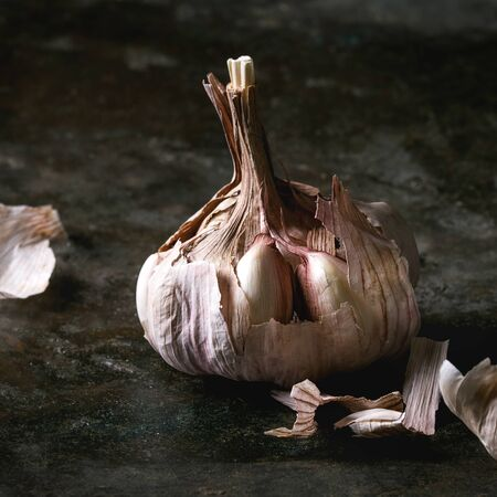 Fresh organic garlic bulb clove whole and peeled over dark metal background. Close up. Square image