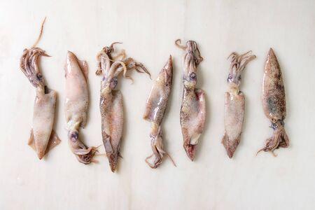 Calamares calamares crudos crudos en fila sobre fondo de mármol blanco. Endecha plana, espacio